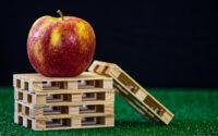 maquinaria embalaje fruta